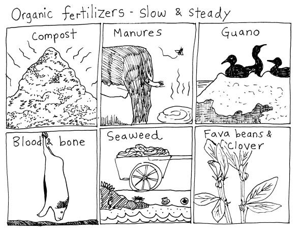 org fertilizer