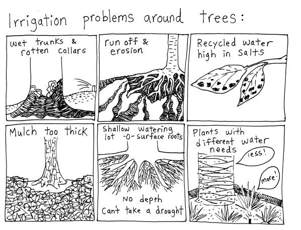 trees irrigation