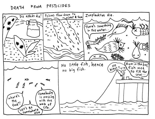 fish8.jpeg